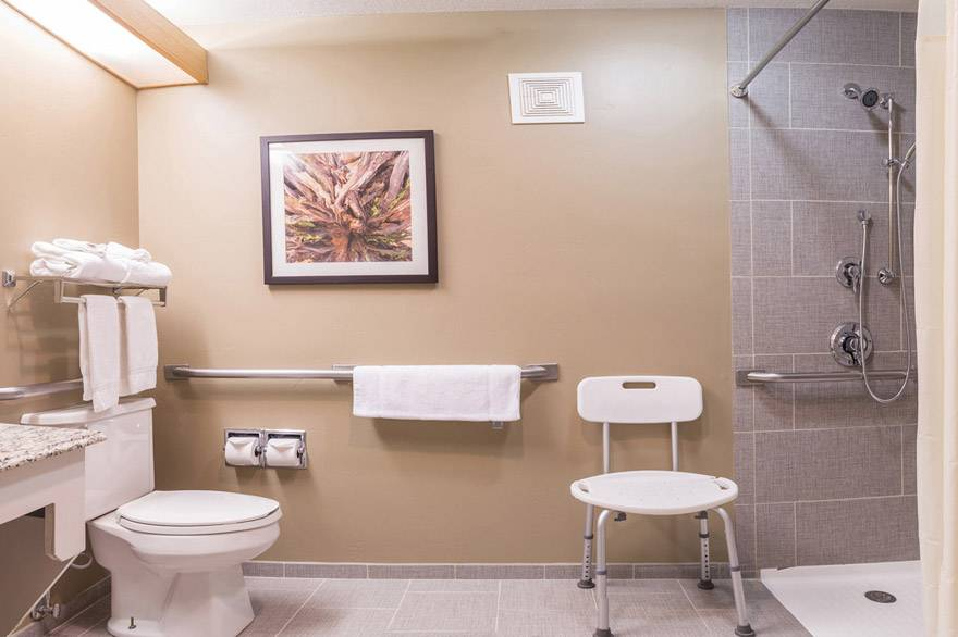 Gray Wolf Inn and Suites ADA accessible bathroom with roll-in shower