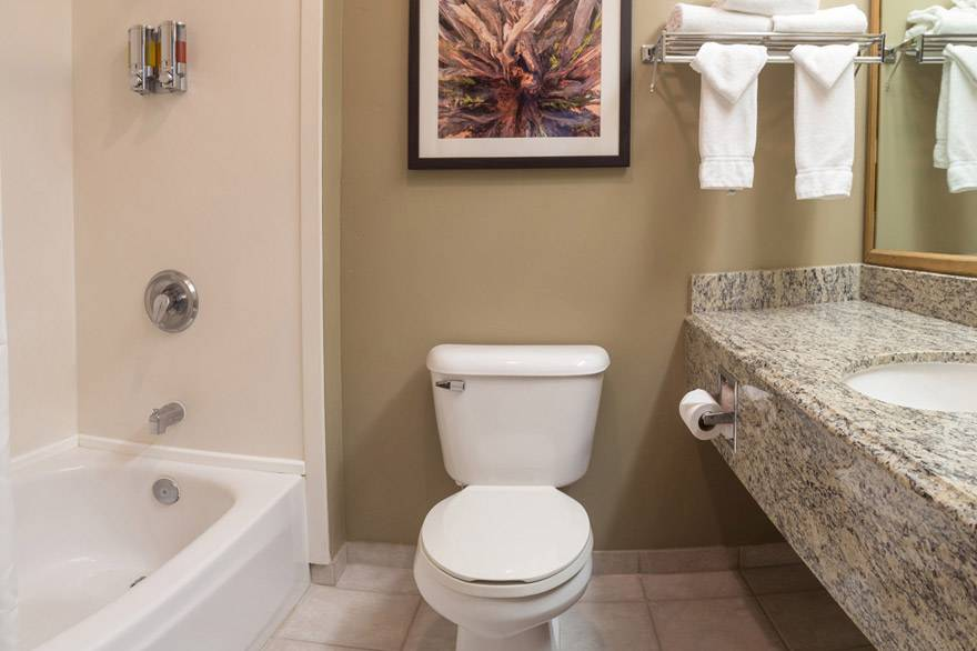 Gray Wolf Inn and Suites standard bathroom