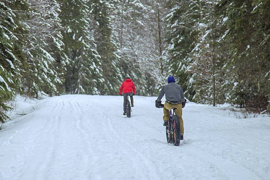 Yellowstone Winter Fat Biking