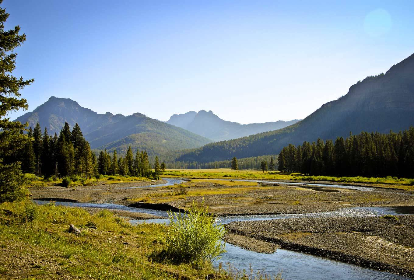 Yellowstone National Park's Lamar Valley in summer