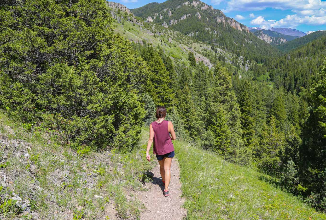 Summer hiking in Yellowstone National Park
