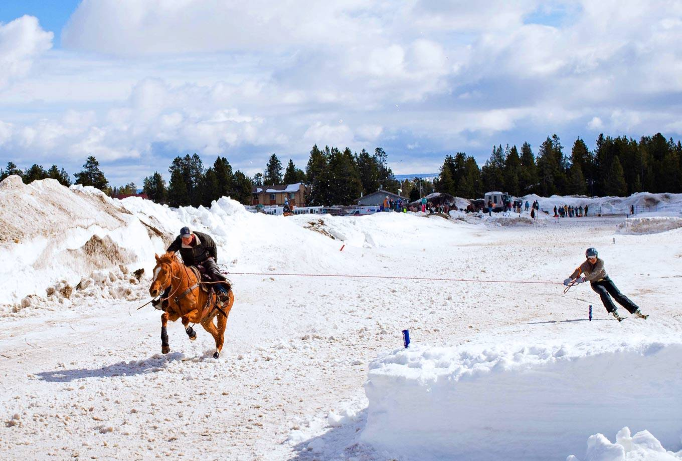 Skijoring in West Yellowstone, MT