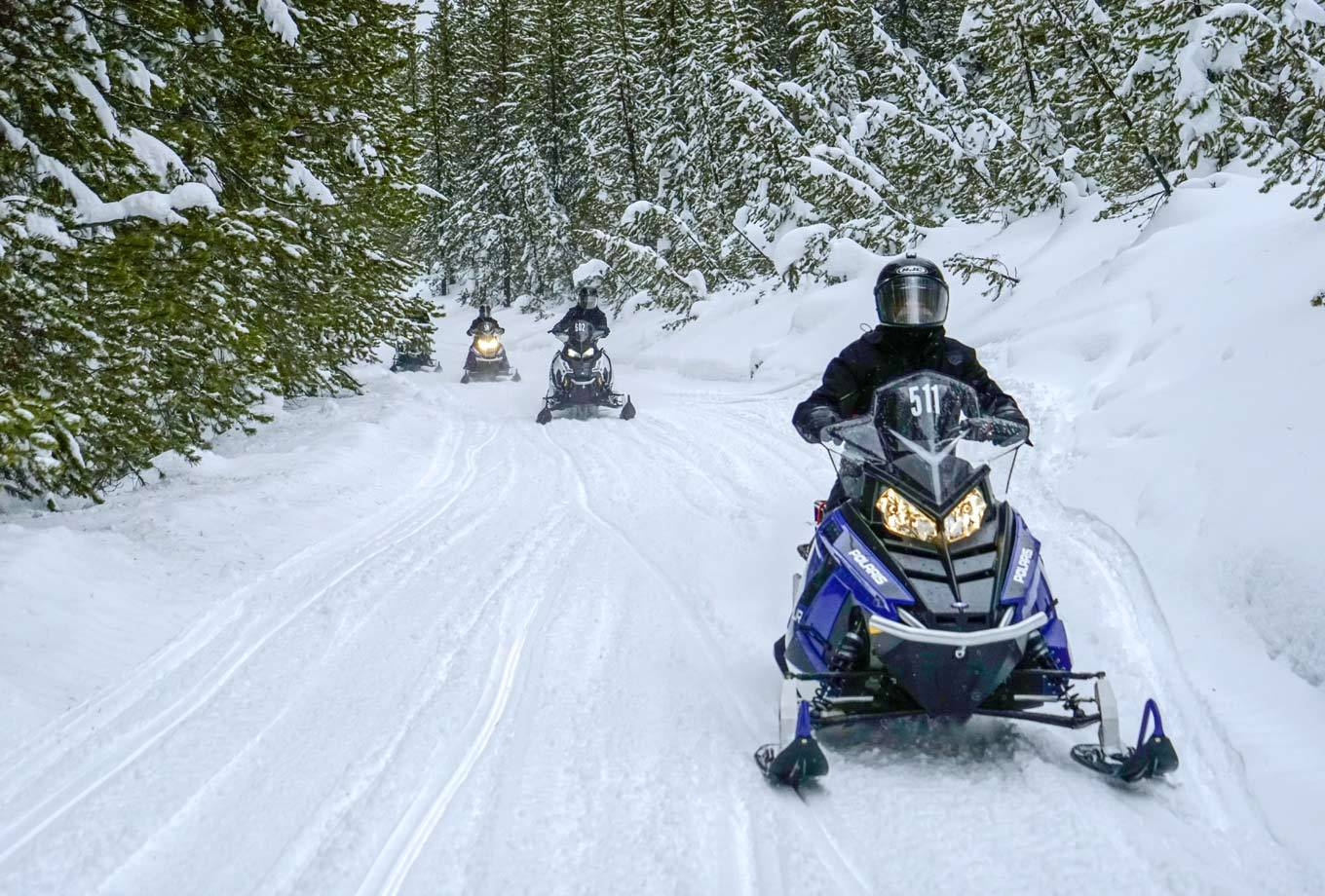 A group of snowmobile riders exploring the trails outside Yellowstone National Park