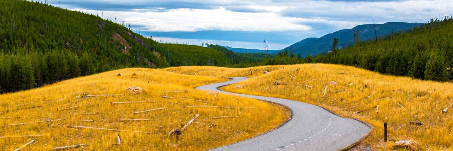 Autumn road through Yellowstone National Park