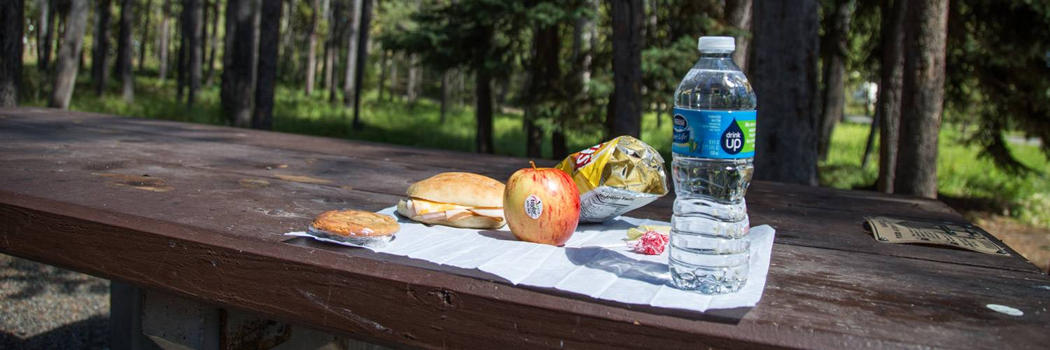 Lunches to go in Yellowstone National Park