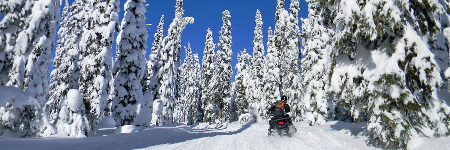 Yellowstone Vacation Tours - Snowmobile Outside the Park