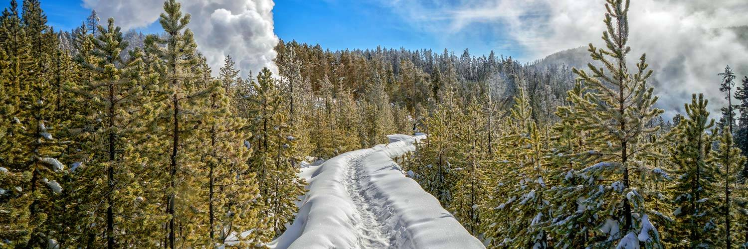 A winter boardwalk in Yellowstone National Park