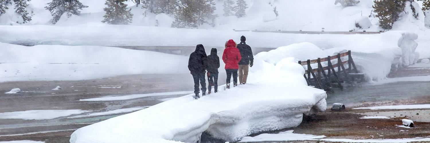 Discover Yellowstone Park in winter