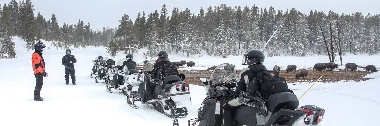 Winter snowmobile tour through Yellowstone National Park