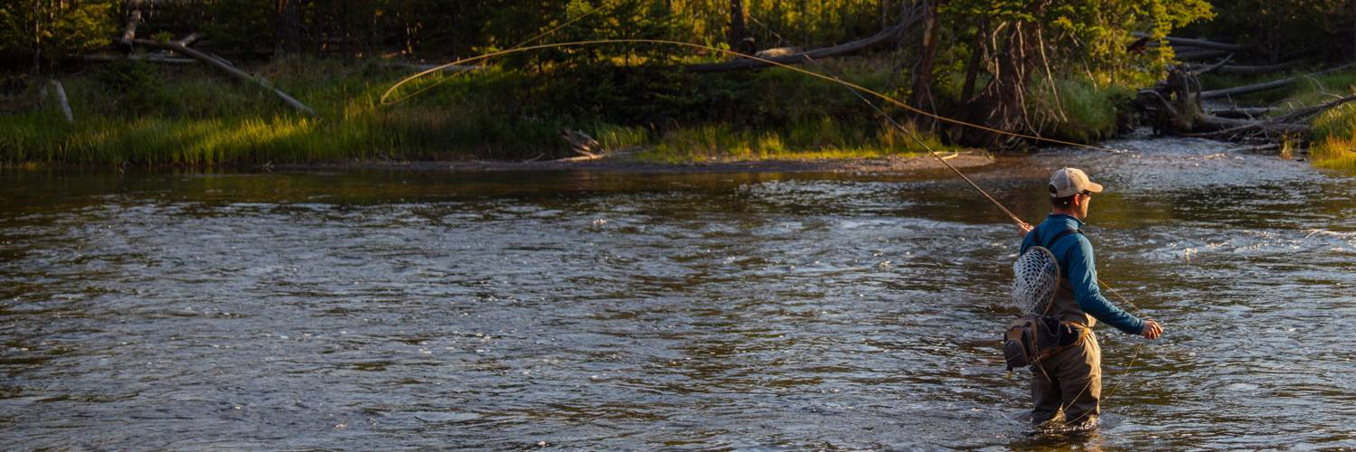 Man fishing in the Madison River in Yellowstone