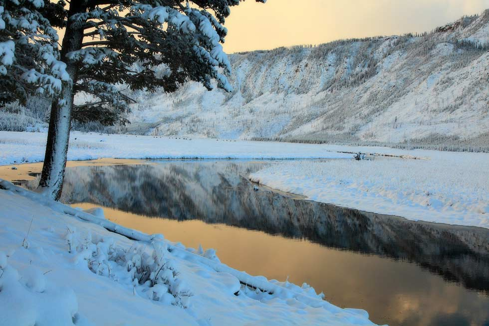 Yellowstone National Park Madison River during winter