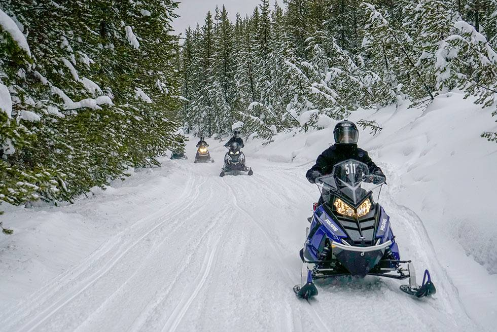 Yellowstone snowmobiles on a mountain trail