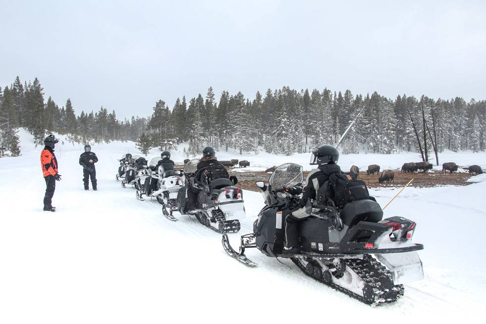 A snowmobile guide stops to teach his group about how Yellowstone bison forage in the winter.