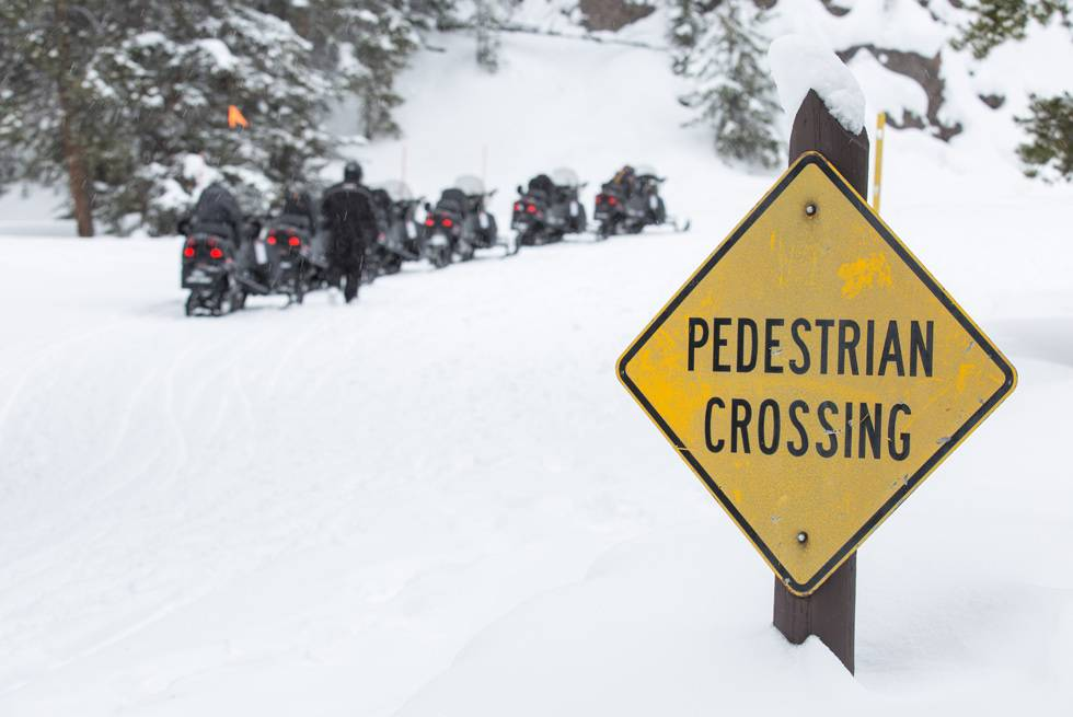 Yellowstone receives so much snow, you can only access the park in winter via snowmobile, snowcoach, ski or snowshoe.