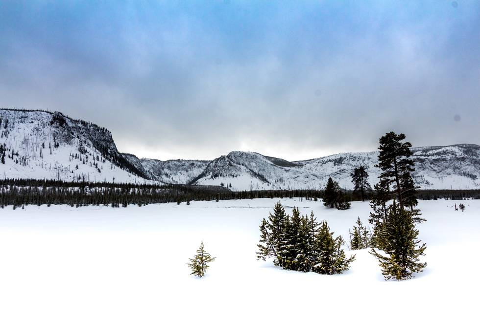 The only way to see this view is by entering Yellowstone on snowmobile, snowcoach, ski, or snowshoe.