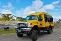 Wildlife viewing in Yellowstone National Park with summer bus tours