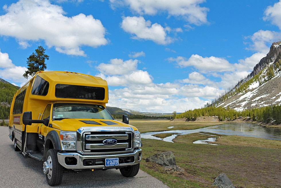 Make your vacation in Yellowstone a summer to remember with Buffalo Bus Touring Company