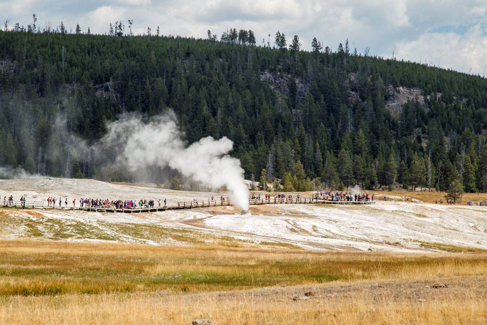 Beehive Geyser is a regular stop on Yellowstone Vacations Summer Bus Tours