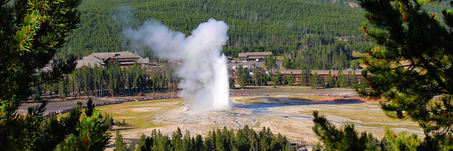 Old Faithful Geyser in summer at Yellowstone National Park