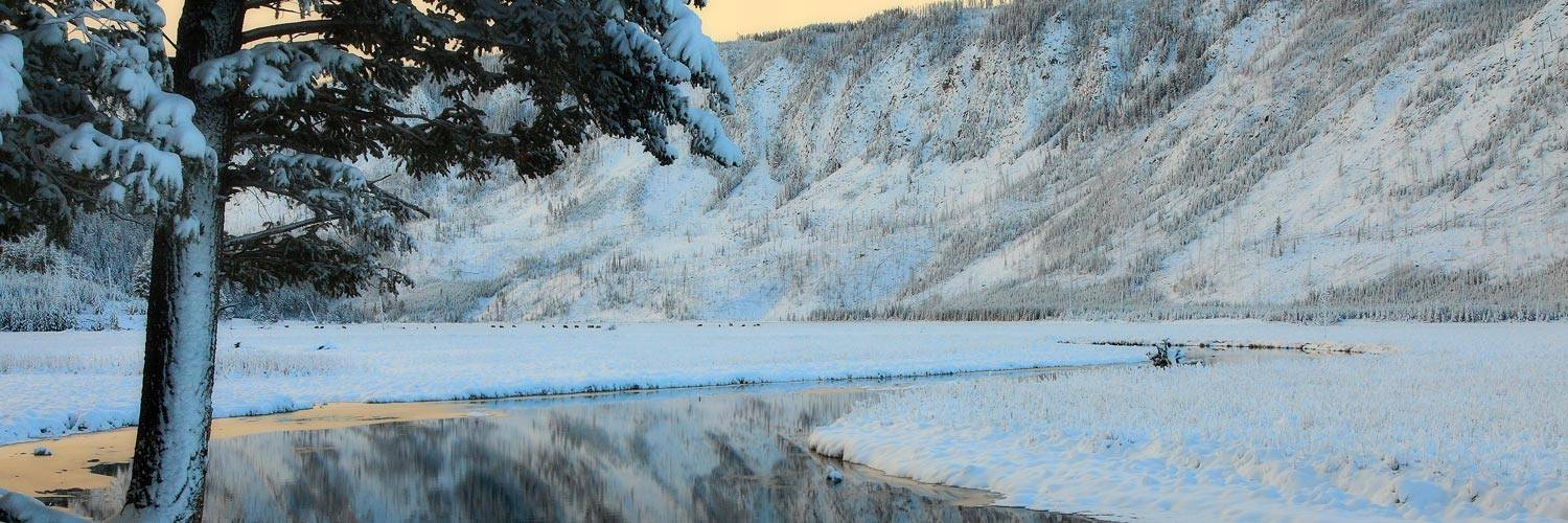 Yellowstone's Madison River in winter