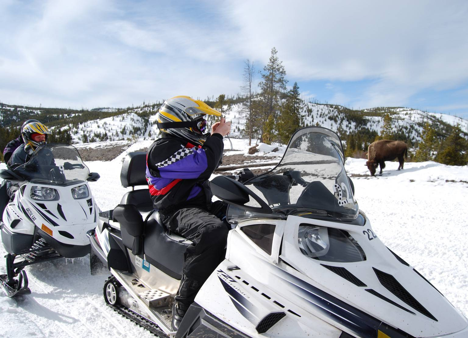 Yellowstone Winter Activities