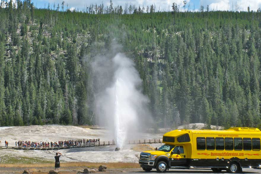 Yellowstone Summer Bus Tours