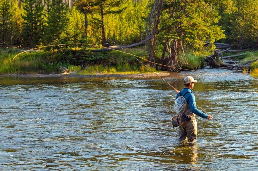 Fly fishing in Yellowstone National Park