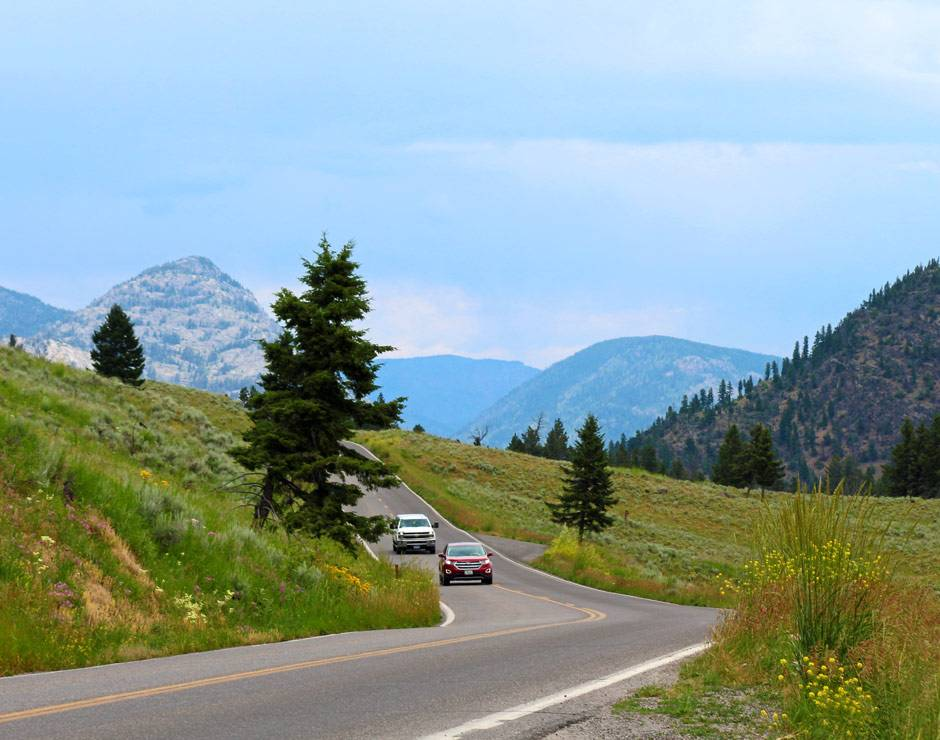 A Yellowstone roadway in summer